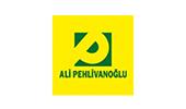 ali pehlivanoglu website tasarımı